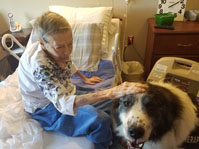 Our residents love pet visits.